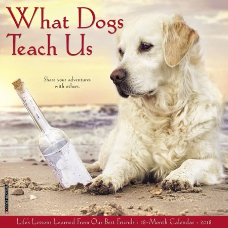 Willow Creek Press 2018 What Dogs Teach Us Wall Calendar