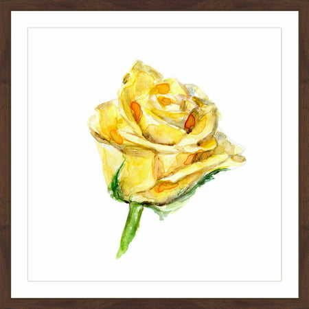Marmont Hill  Tight Yellow Rose  By Michelle Dujardin Framed Painting Print