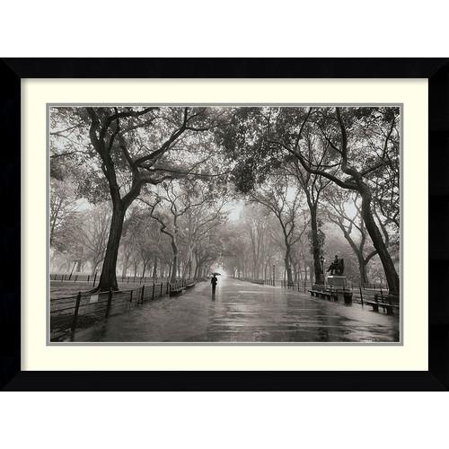 Amanti Art 'Poet's Walk' by Henri Silberman Framed Photographic Print
