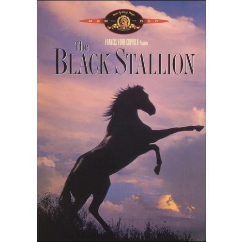 Black Stallion [DVD]
