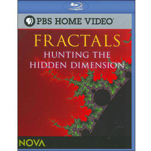 NOVA: Fractals - Hunting The Hidden Dimension (Blu-ray)