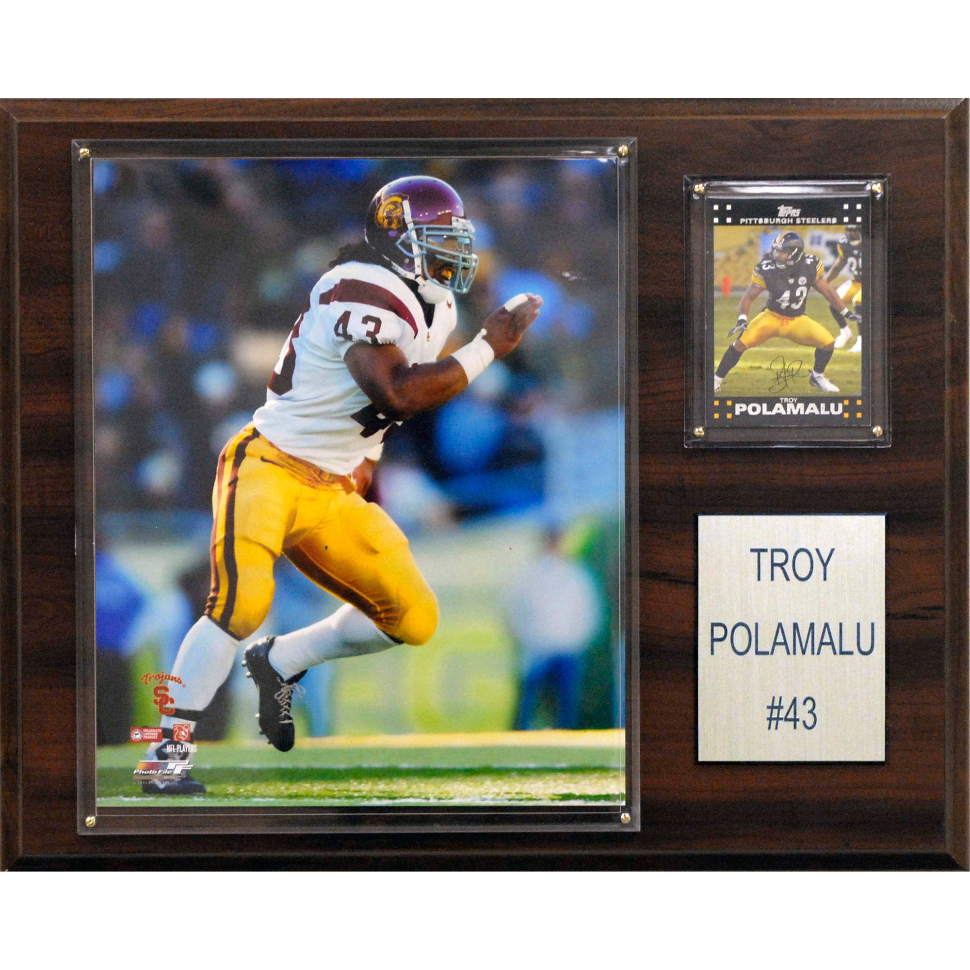 C&I Collectables NCAA Football 12x15 Troy Polamalu USC Trojans Player Plaque