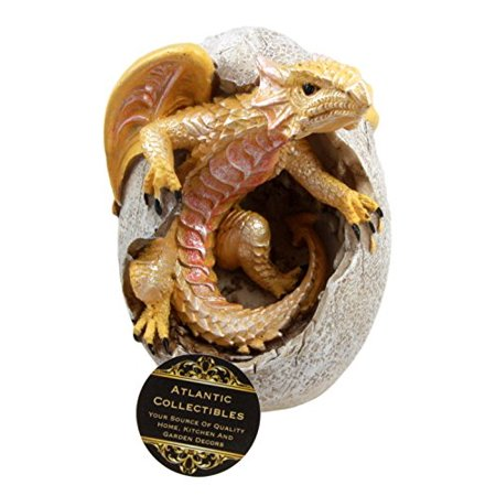 Ebros Gift Fossil Raeon Sunlight Dragon Hatchling Breaking Out of Egg Shell Decorative Figurine 5
