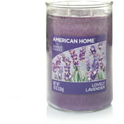 American Home by Yankee Candle Lovely Lavender, 19 oz Large 2-Wick Tumbler
