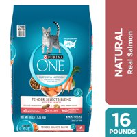 Purina ONE Natural Dry Cat Food Tender Selects Blend With Real Salmon 16 lb. Bag