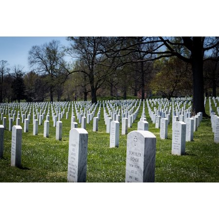 Canvas Print Military Grave Arlington National Cemetery Headstones Stretched Canvas 10 x 14 ()