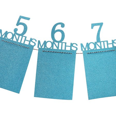 Kids Birthday Gift Decorations 1-12 Month Photo Banner Monthly Photo Wall](Birthday Wall Decoration Ideas)