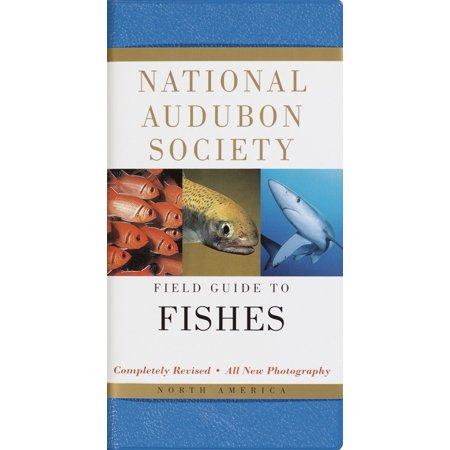 National Audubon Society Field Guide to Fishes : North