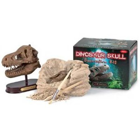Excavation Dig Kit: Dino Skull, It's A Dino Skull, You Dig? Yes, you do dig. And when you're finished digging, chipping, and brushing away the 6.75 x 3.5 x 3.87.., By GeoCentral From