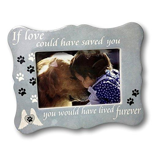 Pet Memorial Picture Frame - If Loved Could Have Saved You Saying