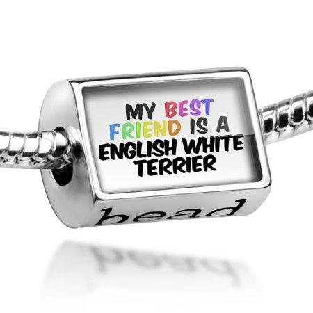 Bead My best Friend a English White Terrier Dog from United Kingdom Charm Fits All European (Best Friend Pandora Bead)