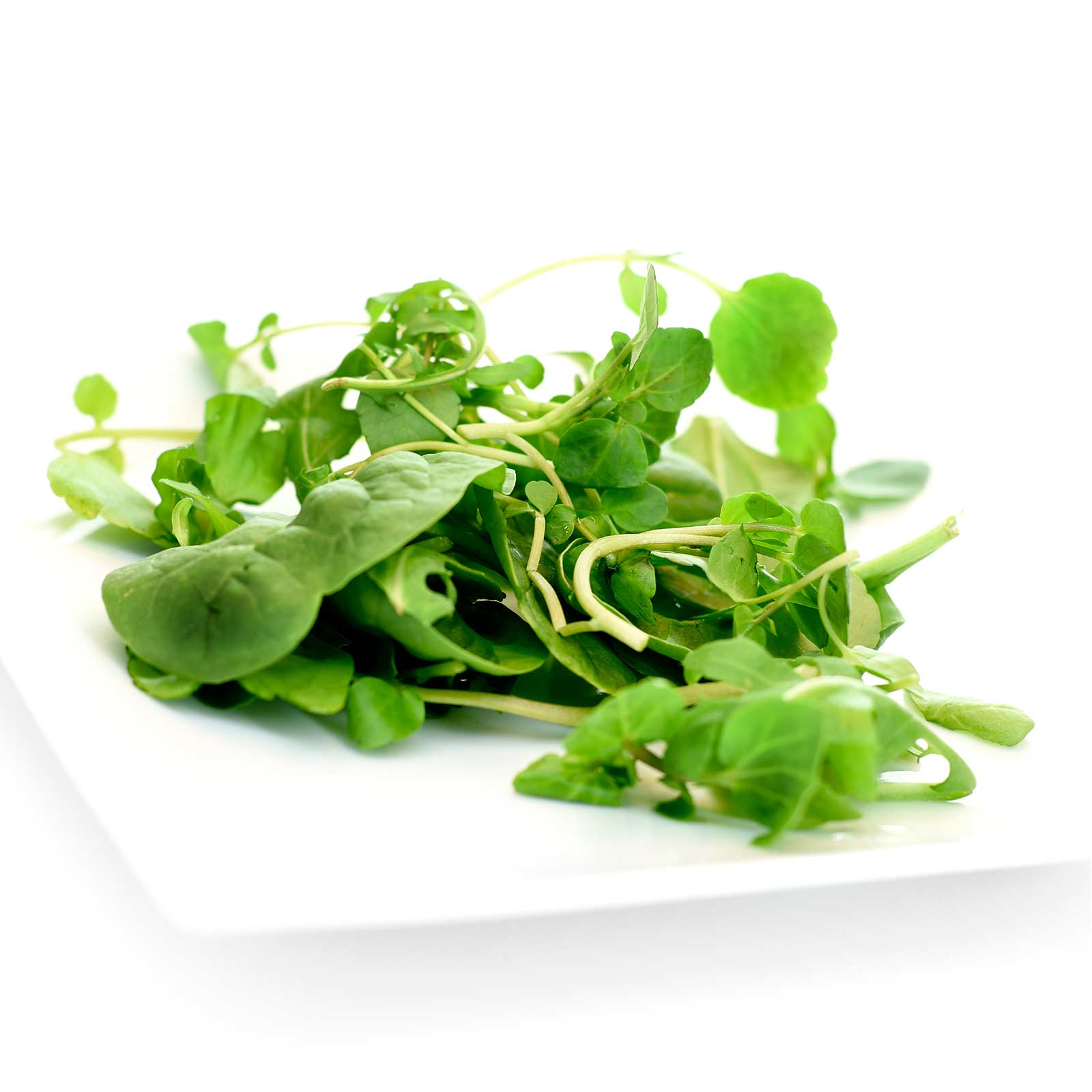 Upland Cress Garden Seeds - 4 Oz - Non-GMO, Heirloom Vegetable Gardening & Microgreens Seeds