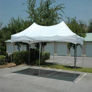 king canopy 10 x 20-walmart