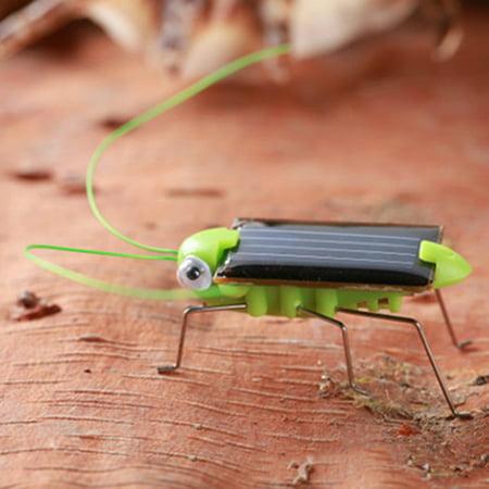 Girl12Queen Creative Fun Solar Power Robot Insect Locust Grasshopper Kids Educational Toy