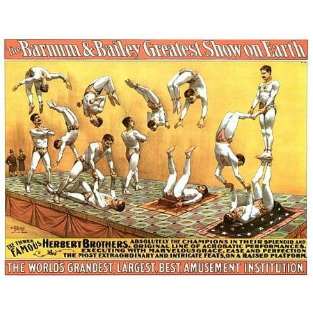 Three Famous Herbert Brothers Circus Poster Print