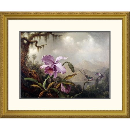 Global Gallery 'Hummingbirds and Orchids' by Martin Johnson Heade Framed Painting Print