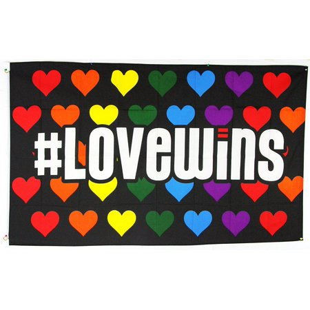 Love Wins Rainbow Hearts LGBT Gay Lesbian Pride Polyester 3x5 Foot Flag Banner By Novelty Stores Online for $<!---->