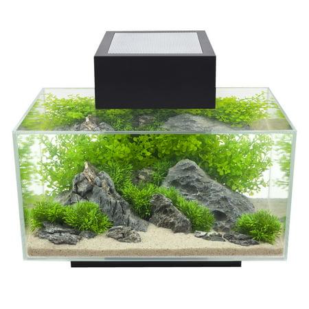 Fluval 6-Gallon Edge Aquarium, Black with 21 LED