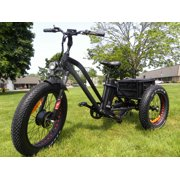 Fat Tire Electric Tricycle