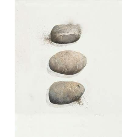 Field Study Stone Canvas Art - Jurgen Gottschlag (22 x 28)