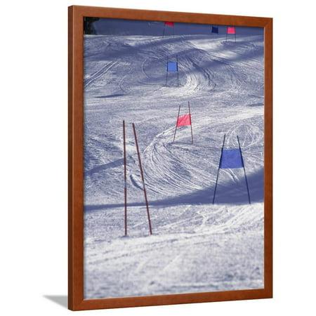 Slalom Ski Race Course Framed Print Wall Art By Bob