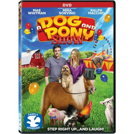 Snow Pony (A Dog And Pony Show (DVD))