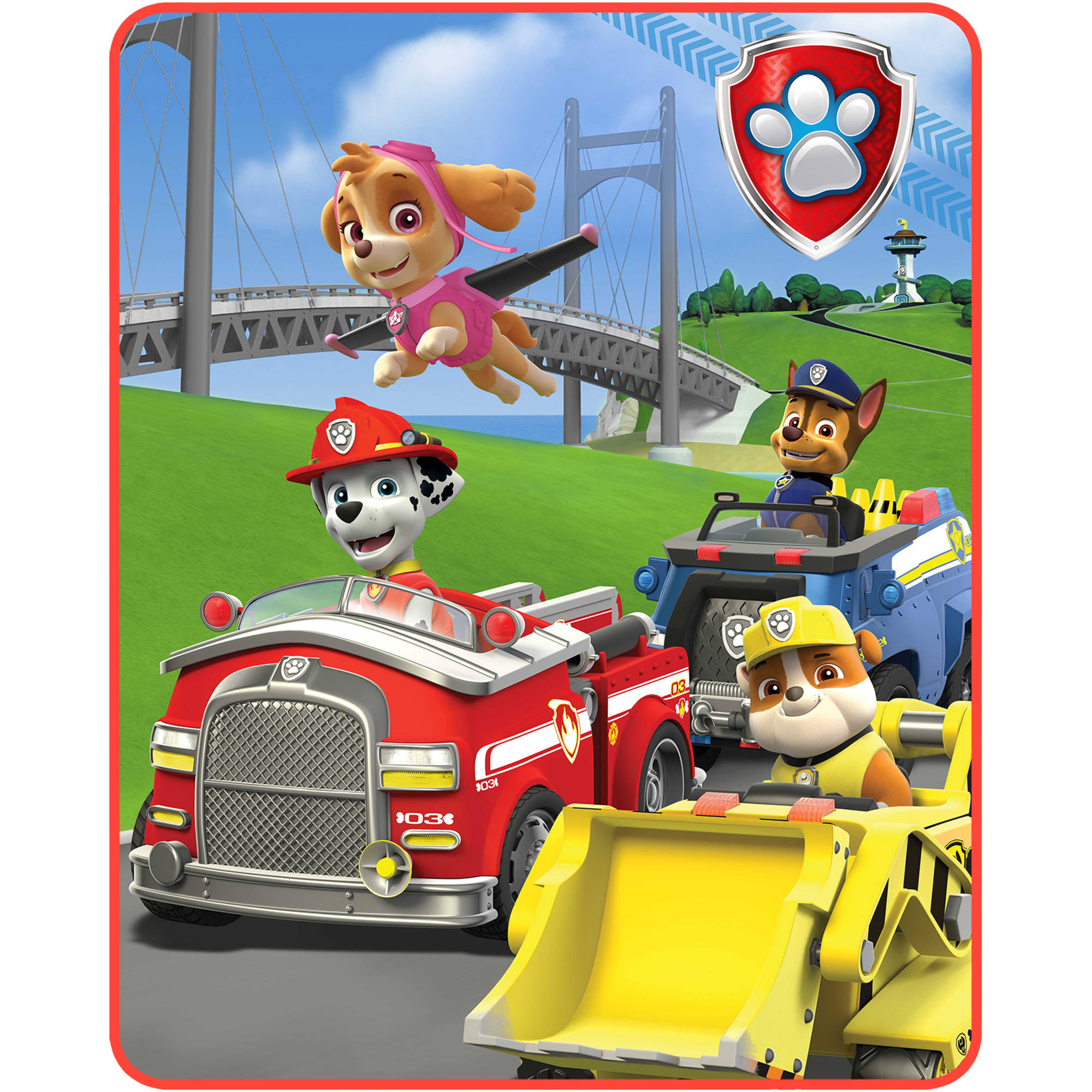 Paw Patrol  Pups In Motion  Silk Touch Throw