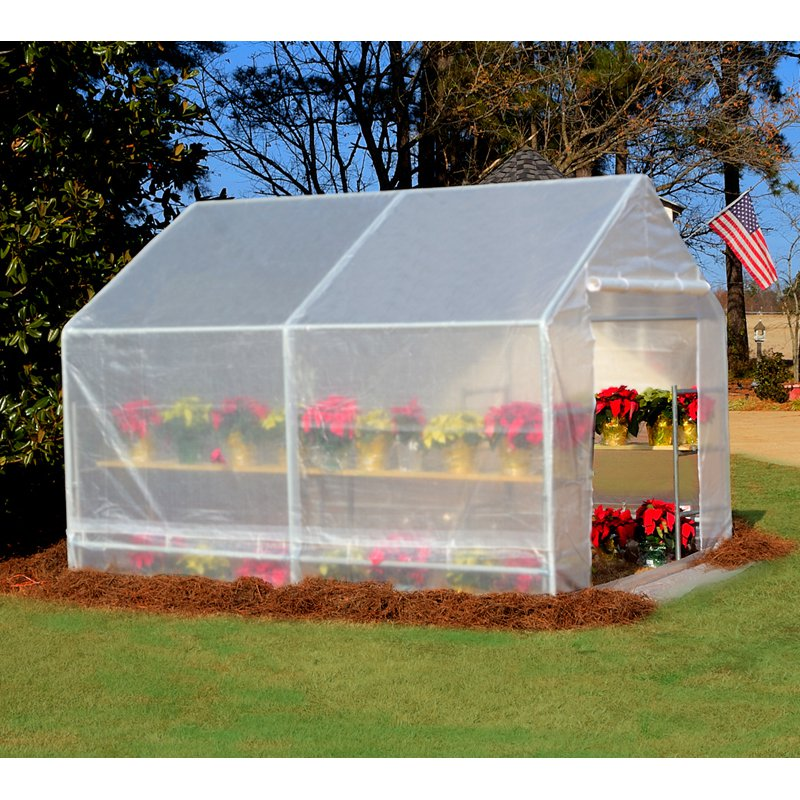 King Canopy 10 x 10 ft. Portable Greenhouse by PIC America Ltd