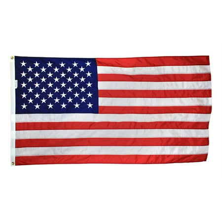 Annin Flagmakers 49 4 Ft  X 6 Ft  Annin Signature Series Us Flag For Outdoors