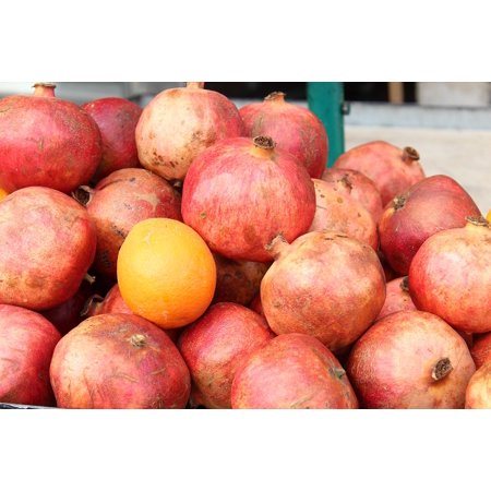 LAMINATED POSTER Pomegranate Fruit Fresh Juicy Red Healthy Poster Print 24 x 36
