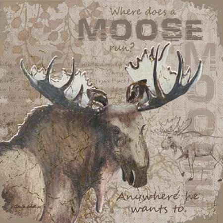 Where Does a Moose Run Poster Print by Anita Phillips (12 x 12) (Phillies Add On Items)