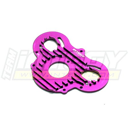 Integy RC Toy Model Hop-ups T6960PURPLE Alloy Motor Plate for HPI E-Savage