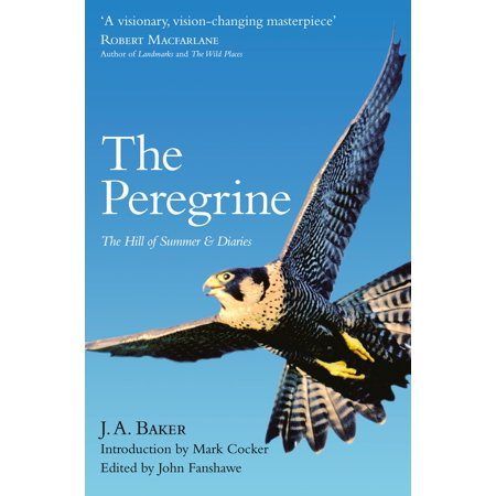 The Peregrine: The Hill of Summer & Diaries: The Complete Works of J. A. Baker - (Bakers Complete Light)