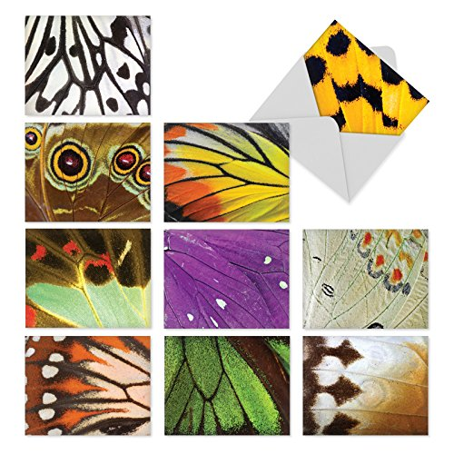 'M3108 WING IT' 10 Assorted All Occasions Greeting Cards Featuring Close-Up Photos of Colorful Butterfly Wings with Envelopes by The Best Card Company