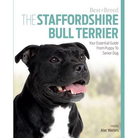 The Staffordshire Bull Terrier : Your Essential Guide from Puppy to Senior