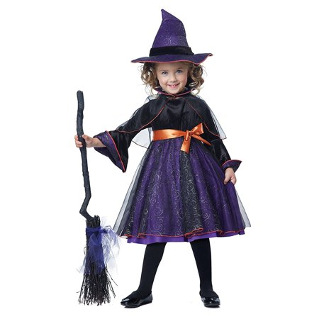 Hocus Pocus Toddler Costume, Size 4-6, Item Includes: Dress, Capelette with Attached Collar and Hat By California Costumes (Hocus Pocus Costumes For Halloween)