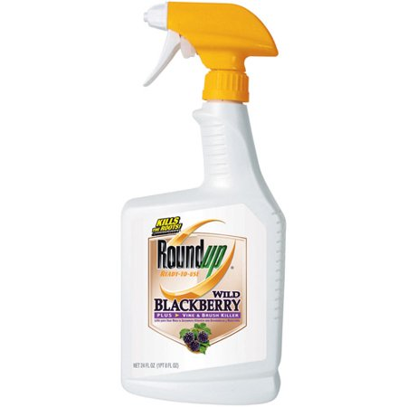 Roundup Wild Blackberry Plus Vine Brush Killer Ready To Use 24 Oz