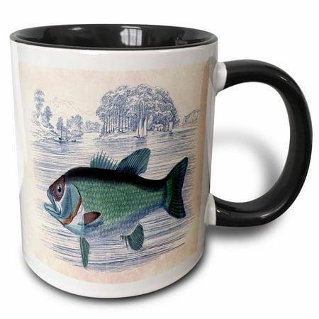 3dRose Vintage Print of A Fish In A Lake With Sailboats - Two Tone Black Mug, 11-ounce - Fish Mug