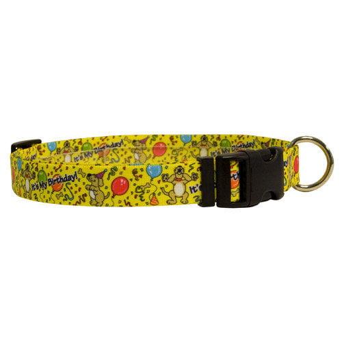 Yellow Dog Design HB100C Happy Birthday Standard Collar - Cat