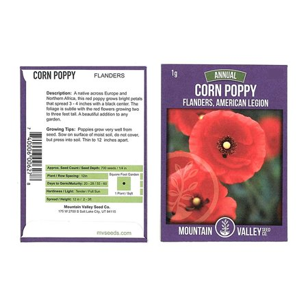 Papaver Somniferum Poppy Seeds - American Legion Corn Poppy Flower Garden Seeds - 1 Gram Packet - Also Called Flanders Poppy - Wildflower - Papaver rhoeas, Corn Poppy Flower Seeds ,.., By Mountain Valley Seed Company Ship from US