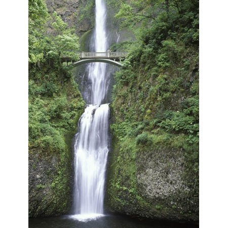 USA, Oregon, Columbia River Gorge Area, Scenic Waterfalls, Multonomah Falls Print Wall Art By Chris Cheadle