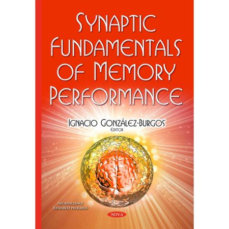 Synaptic Fundamentals Of Memory Performance