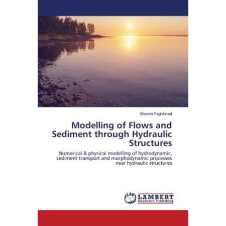 Modelling of Flows and Sediment Through Hydraulic Structures - image 1 de 1