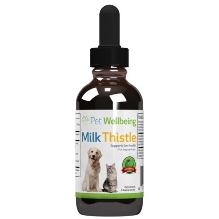 Pet Wellbeing   Milk Thistle Foe Cat Liver Disease Essential Detoxification Support For Cats With Liver Dysfunction Or Pancreatitis