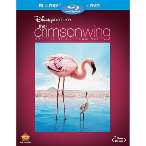 Disneynature: Crimson Wing - The Mystery Of The Flamingo (Blu-ray   DVD) (Widescreen)