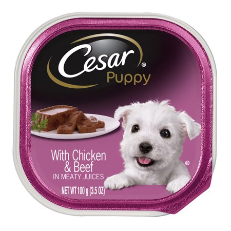 Cesar Wet Dog Food Walmart