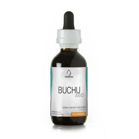 Buchu Alcohol Herbal Extract Tincture, Super-Concentrated Organic Buchu (Agathosma Betulina) Dried (Buchu Leaves)