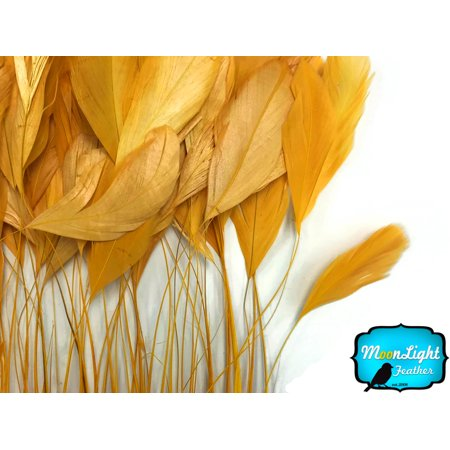 (1 Yard - Gold Stripped Coque Tail Feathers Wholesale (Bulk))