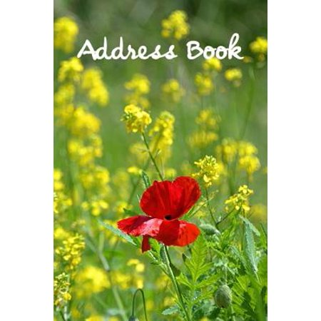 Address Book. : Glossy and Soft Cover, Large Print, Font, 6 X 9 for Contacts, Addresses, Phone Numbers, Emails, Birthday and (Online Store Help)