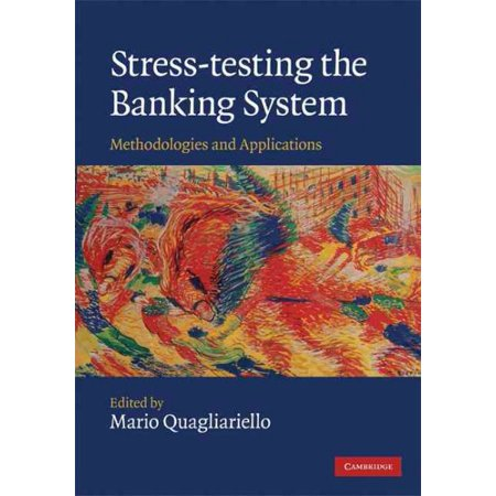 Stress Testing The Banking System